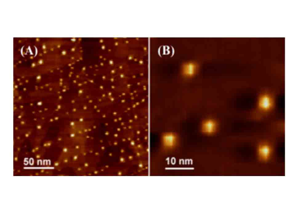 AFM Image Of Carbon Dots